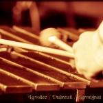 20121207_015_lavolee-dubreil-larmignat-trio_au_pannonica_w_par_val-k