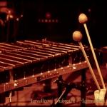 20121207_100_lavolee-dubreil-larmignat-trio_au_pannonica_w_par_val-k